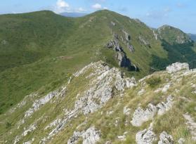 Козя стена и Старопланинското конче