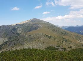Лопушки връх