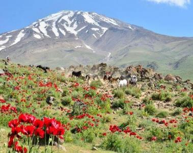 Дамаванд-под небето на Персия